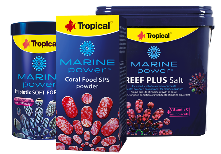 Marine Power Products